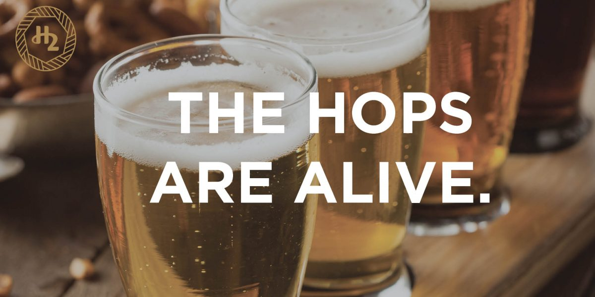 THE HOPS ARE ALIVE: H2 ROTISSERIE & BAR DOES OKTOBERFEST
